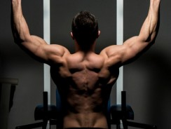 7 Pull Up Bar Exercises that will Work Your Back